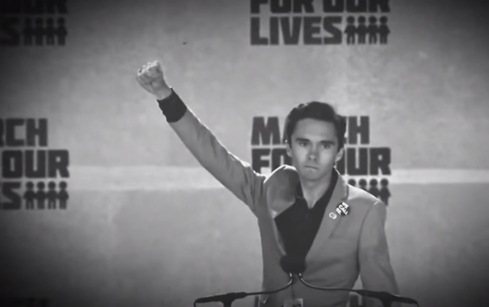 Leftist David Hogg has gone from anti-gun protester to ...